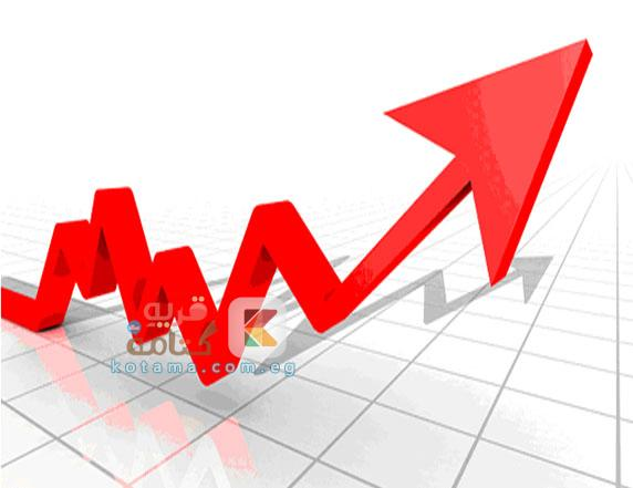 بورصة مصر تستقر فوق 6200 نقطة